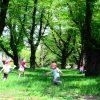 杉並区の保育園問題