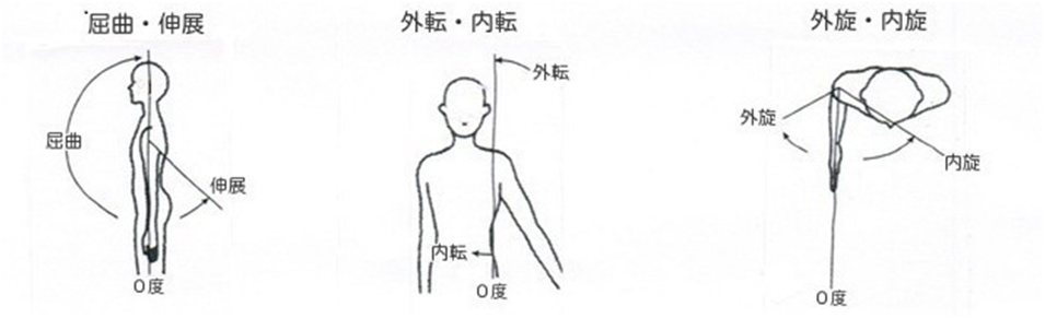 関節可動域(ROM)の看護|測定法・テスト、ROM訓練や看護のポイント | ナースのヒント
